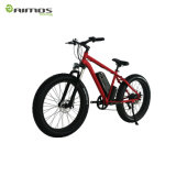 Bici eléctrica del neumático gordo simple de la nieve con precio económico