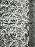 Galvano galvanisierte Draht-sechseckige Draht-Filetarbeit