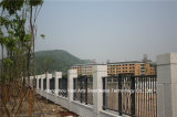 [هوهن] صنع وفقا لطلب الزّبون [هيغ-قوليتي] كلاسيكيّة سكنيّة صناعيّة يغلفن فولاذ سياج 72