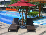 Напольные стулы салона пляжа салона Sun курорта мебели ротанга (LL-RST007)