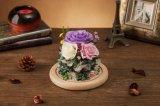 Ivenran ha conservato il presente di compleanno del fiore fresco