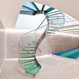 Scala a spirale con la scala di vetro Balustter/inferriata