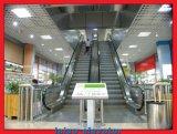 Bester Preis-im Freien InnenEinkaufszentrum-Rolltreppe