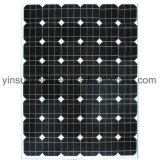 el panel solar del módulo solar 60W para el sistema del picovoltio