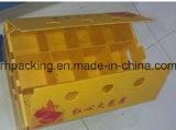 Открытая коробка 4 для Dringking и еда с листами /Easy пластмассы PP для того чтобы положить контейнеры к перевозке
