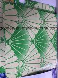 Катушка печати PPGI/PPGL высокого качества стальная