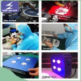La pianta personalizzata di alta qualità LED si sviluppa chiara con Ce RoHS