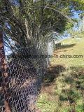 Compensation de volaille de PVC/maille de poulet/treillis métallique hexagonal