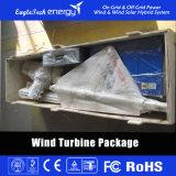 600W het Systeem van de Macht van de Wind van L van de Generator van de Macht van de Wind van de Turbine van de wind