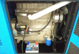 diesel Gensets d'engine de 30kw Ricardo