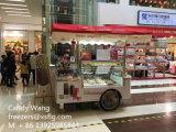 L'étalage de crême glacée transporte en charrette des congélateurs de /Popsicels de bicyclettes d'étalage de /Gelato