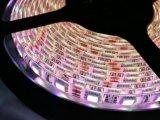 Tira impermeable de la natación de la baja tensión LED de 24V 12V
