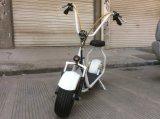 Motorino elettrico di carico Citycoco di Harley del motorino elettrico di certificazione e di tempo 6-8h del Ce