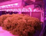 1.2m LED는 홈을%s 표시등 막대를 증가한다 상용 응용 증가한다