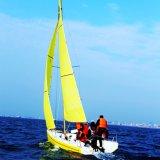 Láser Standard Una fibra de vidrio del barco de vela
