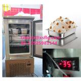 Congélateur à air forcé Afrique du Sud/congélateur d'étalage crême glacée