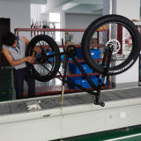 Da montanha gorda do pneu do fabricante 500W 48V bicicletas elétricas
