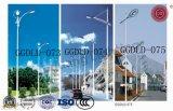 100W-400W新しいデザインIP65によって保証される街灯
