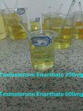 Poeder van het Hormoon van Enanthate 250mg/Ml van het Testosteron van de injectie Steroid Ruwe Steroid