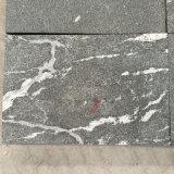 Granit noir avec les veines blanches de couleur (poli, flambé, balayé, Bush a martelé etc.)