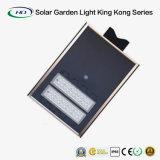 원격 제어를 가진 30W 통합 태양 정원 (Kong Series 가벼운 임금)