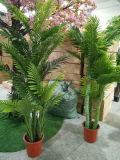 Крытые искусственние заводы пальм декоративные для сбывания