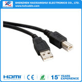 USB 3.0 um macho Am ao Bm do macho do B do USB 3.0
