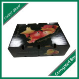 5-Ply Fruit Carton Box com tampa por atacado