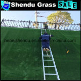 Enig Steunend Goedkoop Kunstmatig Tapijt 10mm van het Gras
