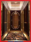 Formato Affissione a cristalli liquidi-Standard elevatore dell'elevatore del passeggero da 4 pollici