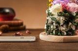 Ivenran konservierte frische Blumen-Geburtstag-Geschenk