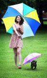 صامد للمطر مصغّرة [بت دوغ] مظلة شفّافة مع سلسلة