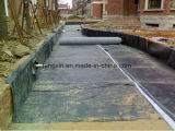 Het goedkope Membraan van het Polyethyleen van de Prijs Waterdichte Materiële, HDPE Geomembrane