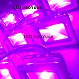 Microplaqueta 660nm do diodo emissor de luz do poder superior profundamente - o diodo emissor de luz vermelho cresce a ESPIGA clara 1-100W de 440nm 380nm-840nm
