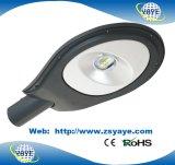 Yaye 18のよい価格の保証との最もよい品質60Wのクリー族の穂軸LEDの道ランプの/LEDの街路照明5年