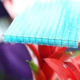 El panel de la promesa de la garantía del abrigo 10 de Sun de las hojas del policarbonato