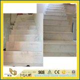 Stairs를 위한 싼 Castro White Marble Slab & Steps & Column
