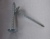 Galvanizado telhando os pregos (BWG8- BWG14)
