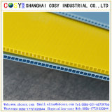 Coroplast 4mm PP Feuille ondulée PP Hollow Sheet
