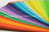 좋은 품질 목재 펄프 색깔 종이 180g 종이