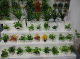 Piante e fiori artificiali degli elementi verticali Gu-Mx172546 del giardino