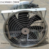 Sale Low Price를 위한 저잡음 Industrial Ventilation Air Circulation Fan