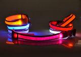 중국 공장 가격 LED 개 가죽끈