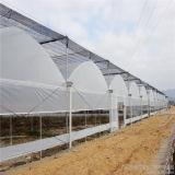 Serra agricola della pellicola di modello della Multi-Portata dell'Ue