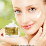 Safe Herbal Effective Beauty Skin Whitening Creme anti envelhecimento
