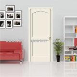 WPC dekorative materielle imprägniern verdrängte Innenfarbanstrich-Tür (YM-055)