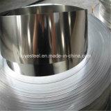 Bobine 310S d'acier inoxydable de bande d'acier inoxydable de bonne qualité