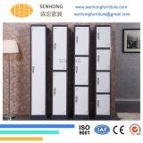 2 de Kast van het Metaal van de Garderobe van deuren voor Kantoormeubilair