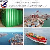 Remetente do transporte de carga do oceano do frete de mar do serviço da logística de China a Bolívia