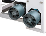 Machine de met gemiddelde snelheid van de Druk van de Gravure (Model DNAY800E)
